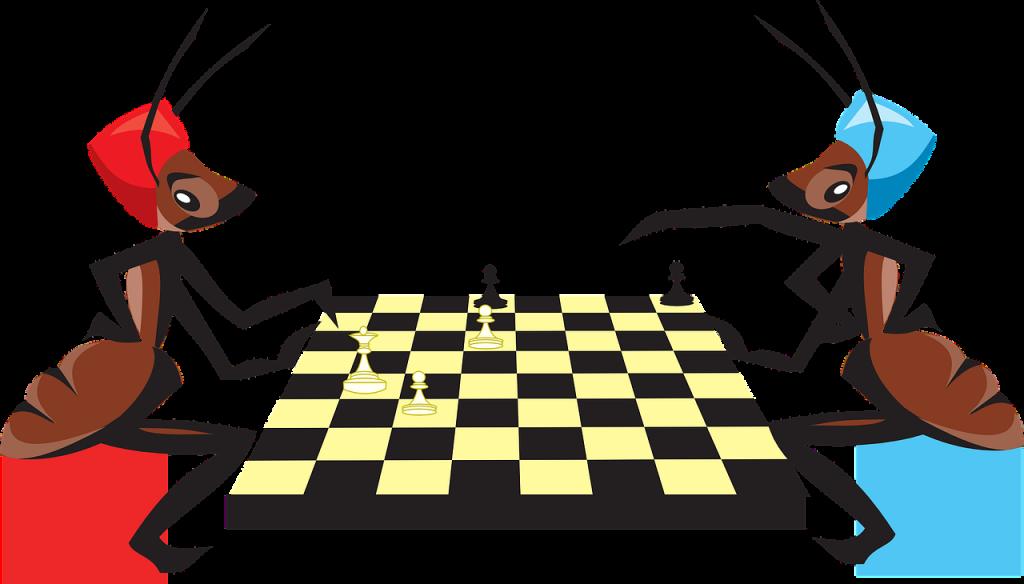 Deux fourmis jouent aux échecs